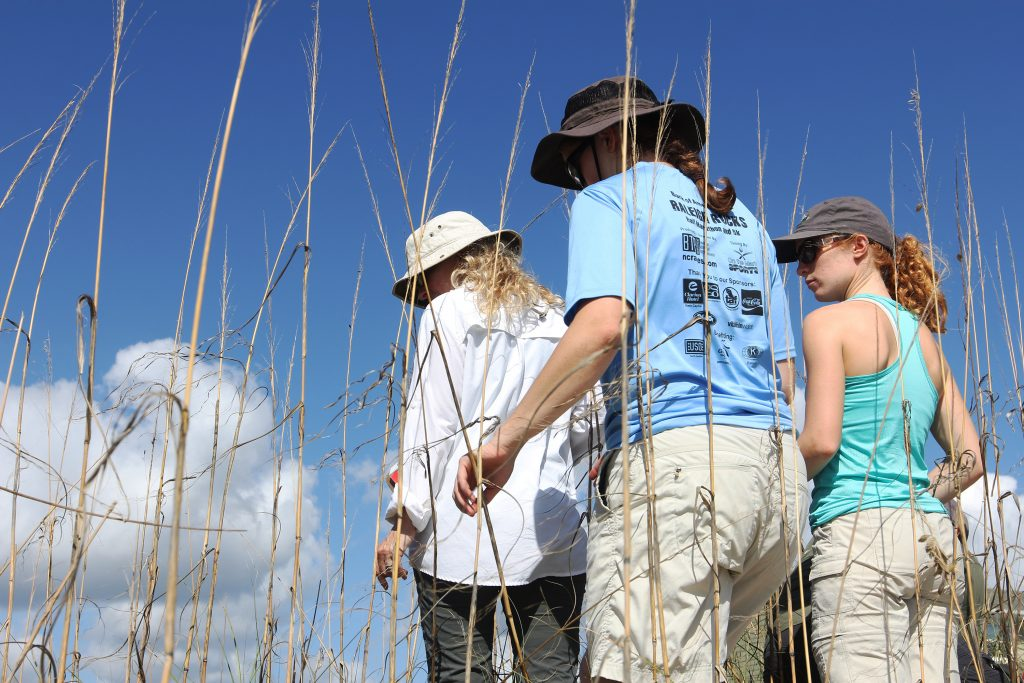 Laura Moore (left), Elsemarie deVries and Katya Jay examine the ecology of a dune on Bogue Banks. (photo by Mary Lide Parker)