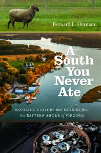 A South You Never Ate book cover
